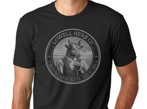 Logo T-Shirt product shot